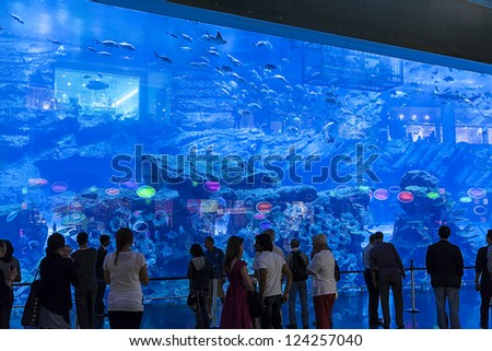 DUBAI, UAE - JAN 4: Aquarium in Dubai Mall - world's largest shopping mall , Downtown Burj Dubai January 4, 2013 in Dubai, United Arab Emirates - stock photo