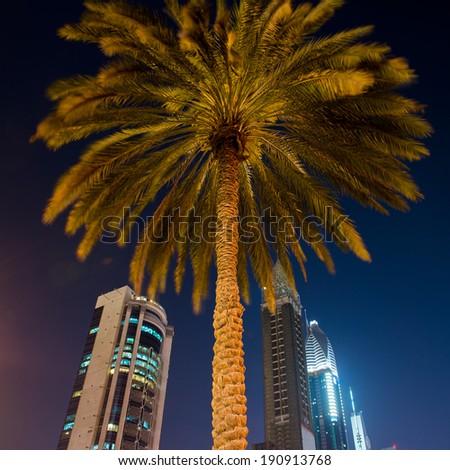 DUBAI, UAE -  6 MARCH, 2014: Beautiful and modern skyscrapers and palm in Dubai. March  6, 2014 Dubai, UAE. - stock photo