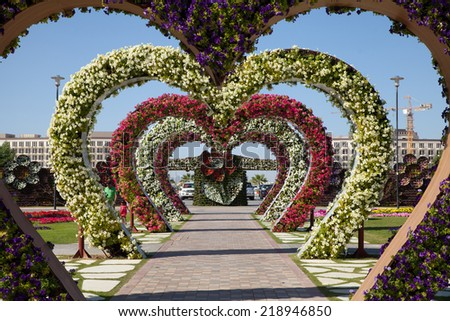 Dubai, UAE - Nov. 29, 2014: Heart shaped flower beds at the Alley of Hearts. Dubai Miracle Garden is famous for its extraordinary flower installations.