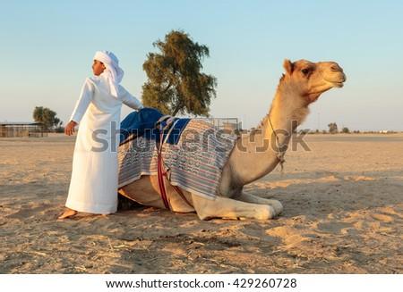DUBAI, UAE - NOVEMBER 12, 2013: Arab boy with a camel on the farm - stock photo