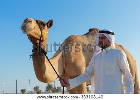 DUBAI, UAE-NOVEMBER 12, 2013: Arab man and camel on the farm - stock photo