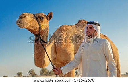 DUBAI, UAE - NOVEMBER 12, 2013 :young Arab with a camel in the desert - stock photo