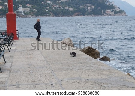 DUBROVNIK, CROATIA - OCTOBER 18, 2016: Mature woman and alley cat near marine beach in gloomy evening