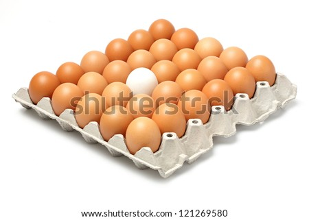 Duck and chicken eggs in paper tray isolated on white - stock photo