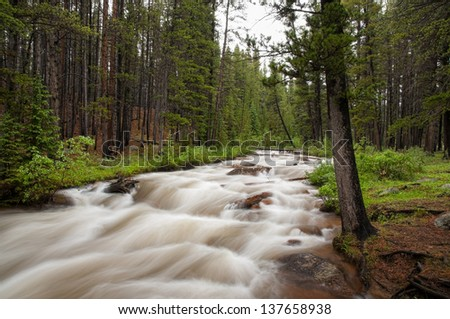 Duck Creek along the Guanella Pass Scenic Byway in Colorado. - stock photo