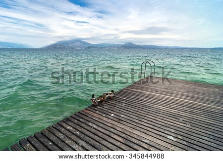 ducks on pier with cloudy sky in Sirmione, Italy. Sirmione is one of lake Garda most popular cities visited by tourists every summer.