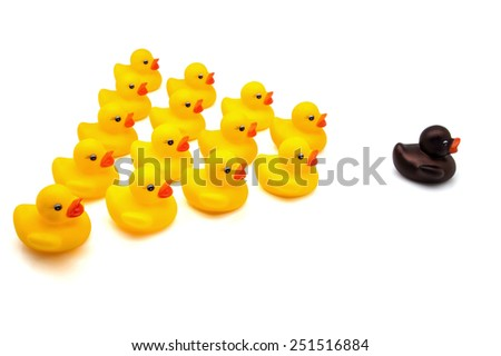 ducks squadron on white fund  - stock photo
