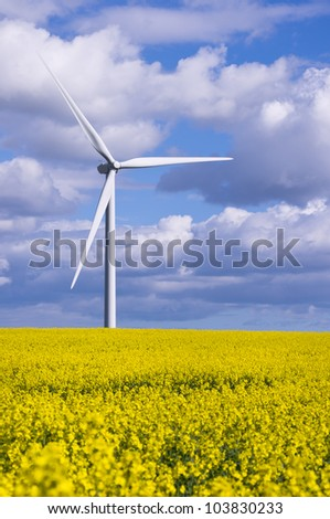 Duel energy conservation / Duel green energy from wind power and biofuel