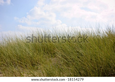 Dune against the blue sky