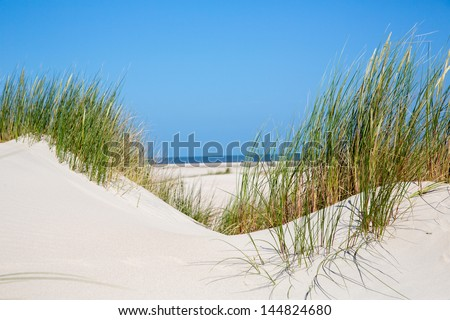 dune at the coast of the German Sea (Island Norderney/Germany) - stock photo