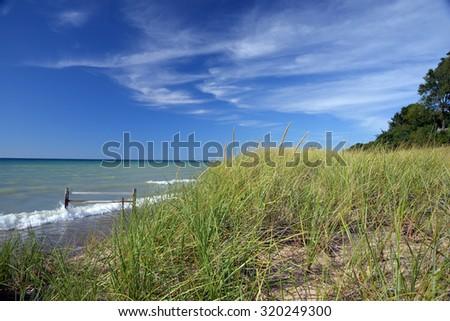 dune grass on a Lake Michigan bluff  - stock photo