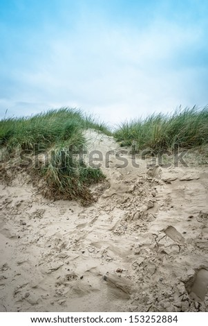 Dune hill covered with sand and reed - stock photo