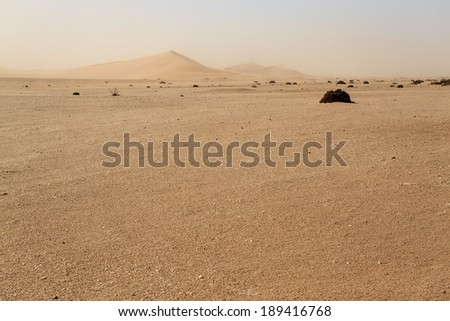 Dune 7 in Namib Desrt, Namibia, Africa - stock photo