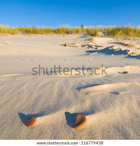 Dune on Beach at Sunset - stock photo