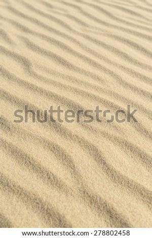 Dune on beach sand. - stock photo