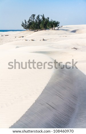 Dunes and wild beach in southern Madagascar - stock photo
