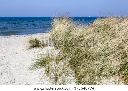 Dunes at the Baltic Sea, Germany - stock photo