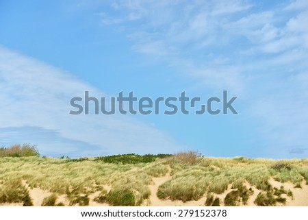 Dunes at the North sea shore in Vlissingen, the Netherlands - stock photo