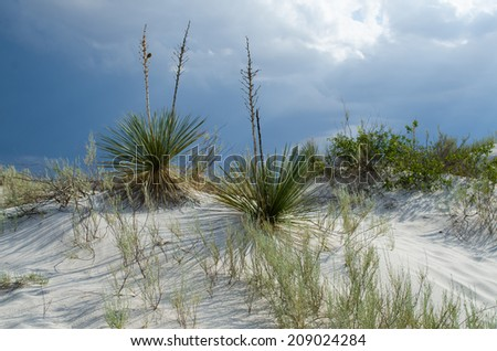 Dunes at White Sands New Mexico - stock photo
