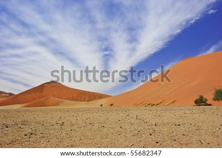 Dunes in Namib desert, Namibia - stock photo