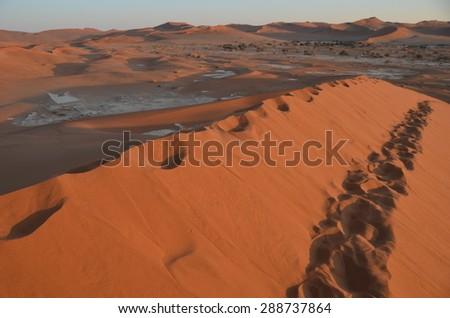 Dunes in Namib desert, Namibia, Africa - stock photo
