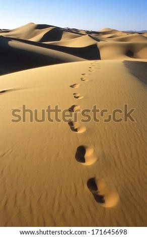 Dunes of Erg Chebbi in Morocco - stock photo
