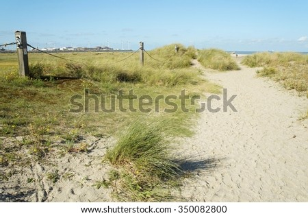 Dunes of sand with green tall grass near Northern sea in Zeebrugge, Belgium - stock photo