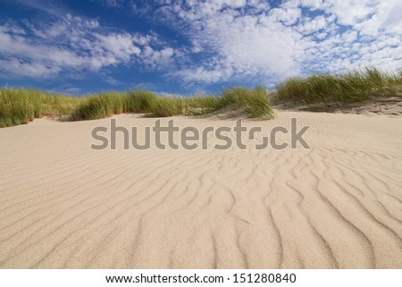 Dunes on a beach in Leba, Poland - stock photo