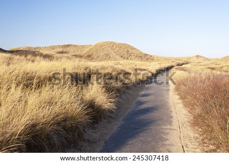 Dunes on the North Frisian Island Amrum in Germany - stock photo