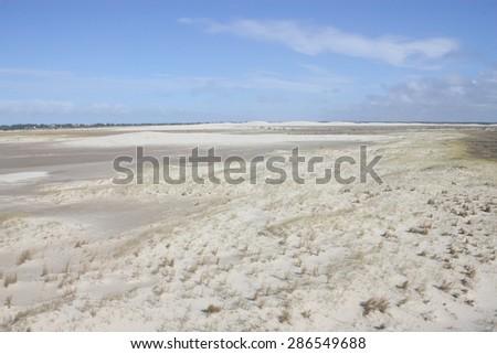 Dunes park - Cidreira - Tramandai - Rio Grande do Sul - Brazil - stock photo