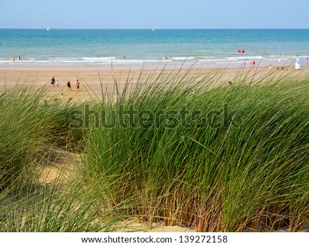 Dunes to the sea. Seascape. - stock photo