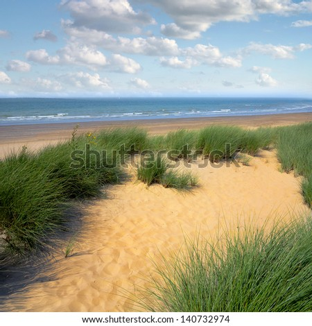 Dunes to the sea. Seascape.
