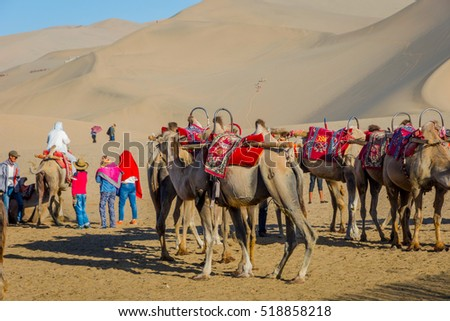 DUNHUANG, CHINA - JUNE 28: Group of camels for ride at sand dunes in Gobi desert, Gansu province. June 2016
