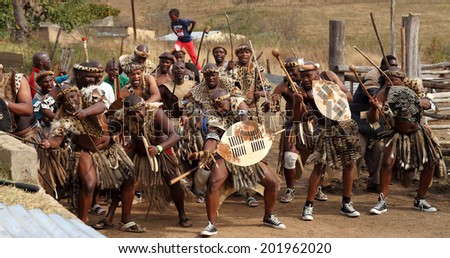 DURBAN, SOUTH AFRICA - JUNE 29: A group of men perform a traditional Zulu war dance at a wedding celebration known as Umabo in Kwa Zulu Natal, South Africa on June 29, 2013.  - stock photo