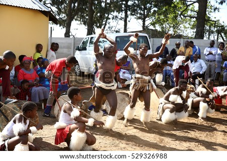 DURBAN, SOUTH AFRICA - October 22: A group of Zulu dancers perform at a traditional Zulu ceremony in Kwa Zulu Natal, South Africa on October 22, 2016.