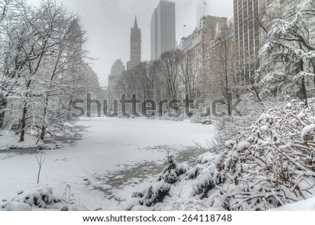 During snow storm in Central Park, New York City - stock photo