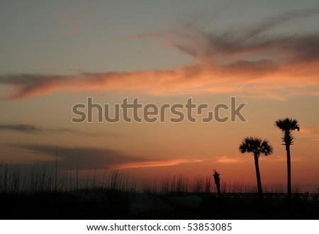 Dusty blue sky streaked with orange clouds and silhouette of beach with seaoats and palm trees. - stock photo