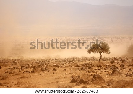 Dusty plains during a severe drought, Kenya