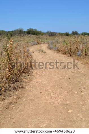 Dusty Track leading through the Cretan Countryside