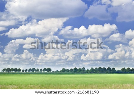 Dutch landscape with a row of trees, blue sky and dramatic shaped white clouds. - stock photo
