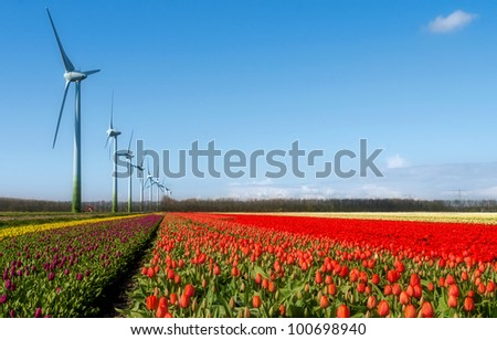 Dutch Landscape with Red Tulips and Wind Turbines - stock photo