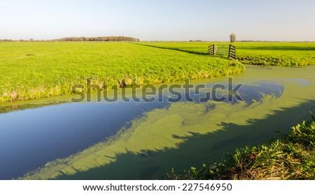 Dutch polder landscape in early morning light in the fall season. - stock photo