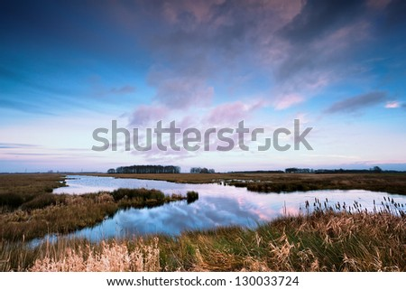 Dutch sheep herd on winter pasture by canal - stock photo