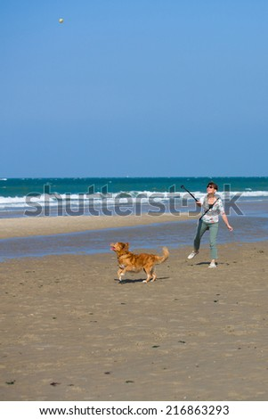 Dutch woman throwing a ball at the beach in Zeeland, Netherlands, on a bright summer day, playing with the dog having fun