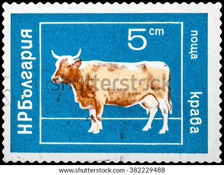 DZERZHINSK, RUSSIA - FEBRUARY 11, 2016: A postage stamp of BULGARIA shows cow, circa 1961 - stock photo
