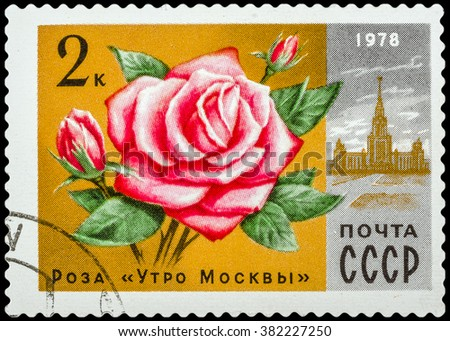 DZERZHINSK, RUSSIA - FEBRUARY 11, 2016: A postage stamp of USSR shows rose Moscow morning & lomonosov university from Moscow flowers, circa 1978 - stock photo