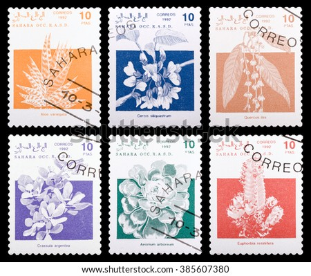 DZERZHINSK, RUSSIA - FEBRUARY 04, 2016: Set of a postage stamp of SAHARA shows flowers, circa 1992
