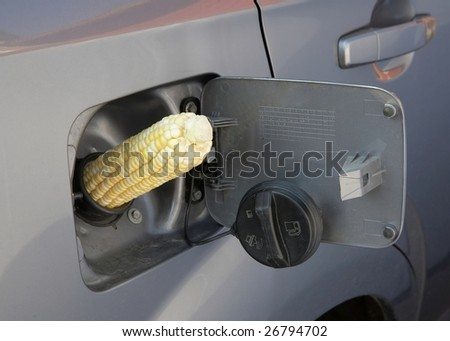 E85 Ethanol Gas concept corn in in vehicle gas tank - stock photo
