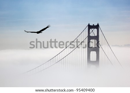 Eagle and Golden Gate Bridge, San Francisco, California - stock photo
