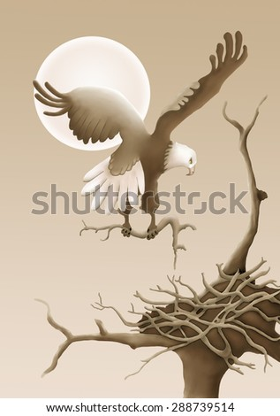 Eagle Building Nest in a tree. - stock photo
